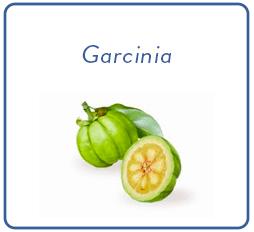 Carré Garcinia