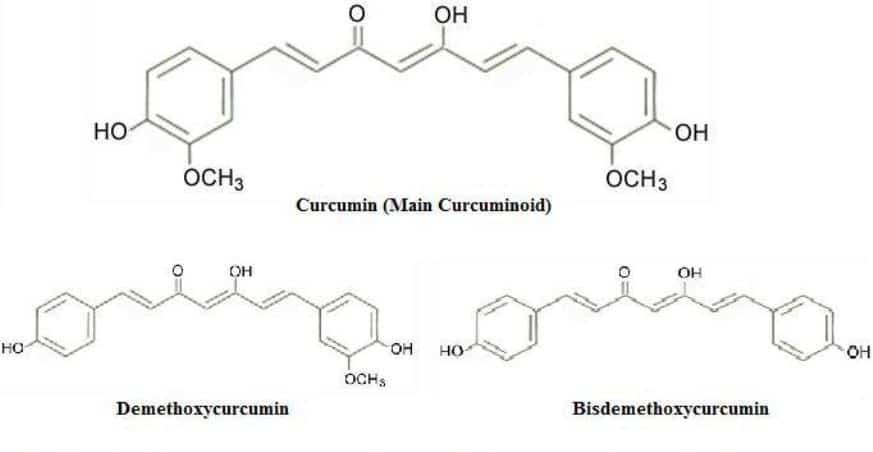 Structure chimique de la curcumine et de ses deux dérivés les plus proches