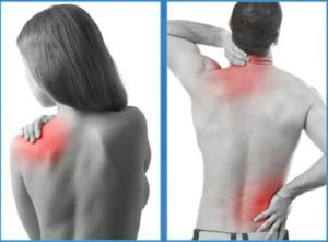 Manifestations de la douleur musculaire:  courbature,