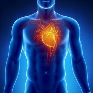 Insuffisance cardiaque, baisse de la capacité du cœur à pomper correctement le sang