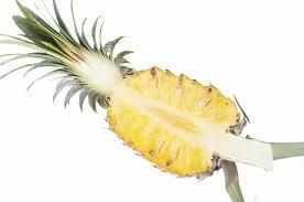 bromelaine tige ananas