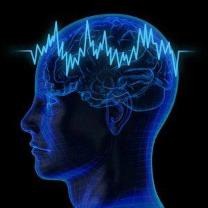 Maladie de Parkinson, pathologie se caractérisant par une dégénérescence progressive des cellules nerveuses