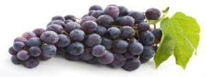 Resveratrol et raisin rouge