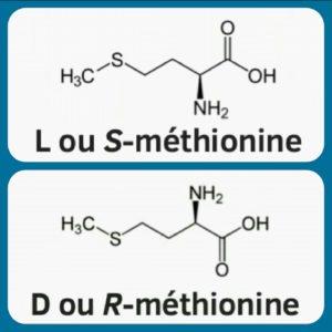 Les formes naturelle et racémique de la méthionine