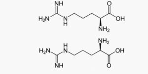Les deux énantiomères de l'Arginine : L-arginine et R-arginine