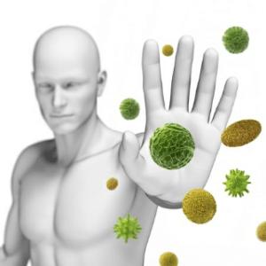 L'astragale peut augmenter les défenses immunitaires de l'organisme