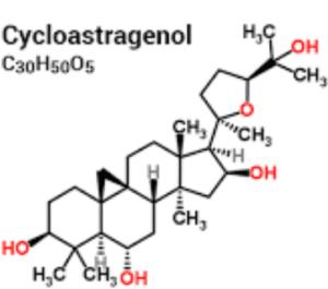 Le cycloastragenol présente une structure chimique proche de l'astragaloside IV