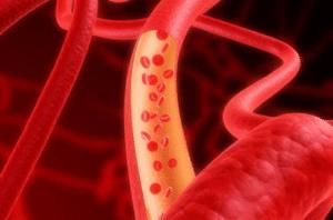Le raccourcissement des télomères augmente les risques de contracter des maladies coronariennes