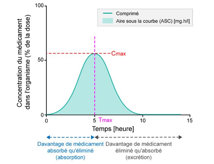 biodisponibilité et équivalence