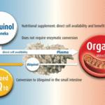 Coenzyme Q10 : ubiquinol ou ubiquinone ? Guide d'achat