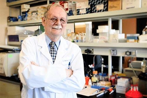 Coronavirus : la quercétine serait-elle un remède ?