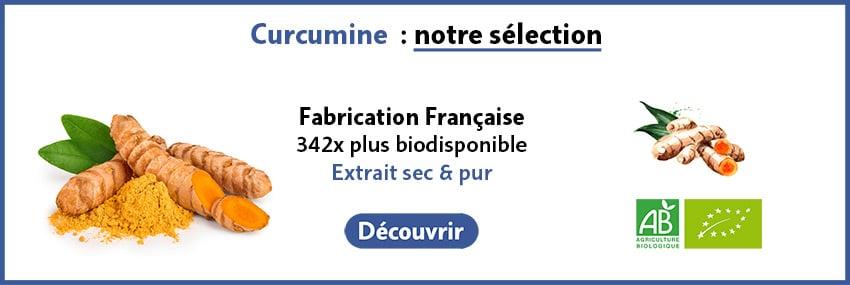 Curcumine bio guide
