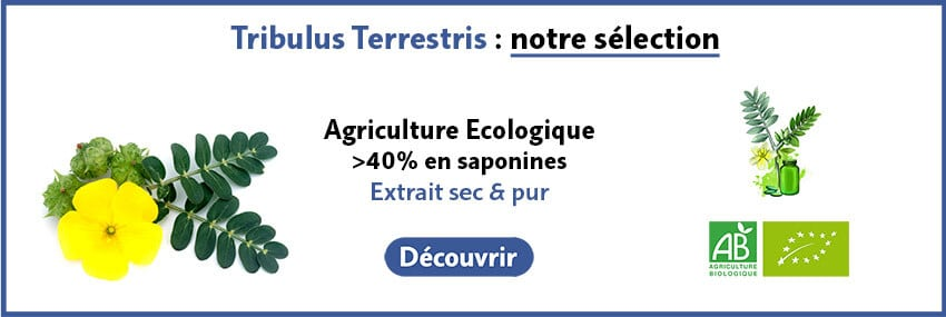 Guide d'achat Tribulus Terrestris