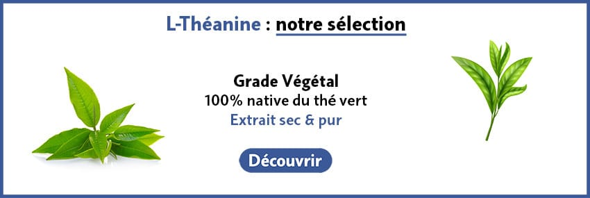 Théanine guide