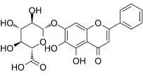 La baïcaline, une molécule santé